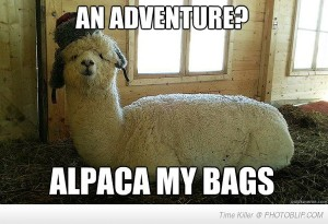 alpaca-my-bags-quickly