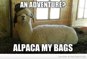 alpaca-my-bags-quickly